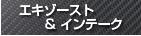 tm-sq エキゾースト&インテーク